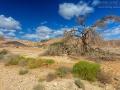 Landschaft_Israel_5DSR_23564