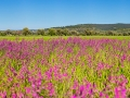 Landschaft_Griechenland_5DSR_40608_bis_40614