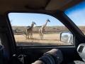 namibia_2012_g12_02414
