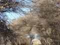 namibia_2012_tz7_0787