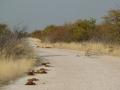 namibia_2012_tz7_0906