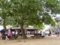 suedafrika_2011_tz7_0093