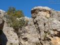 Klippenkleiber, Eastern Rock Nuthatch, Great Rock Nuthatch, Eastern Rock-Nuthatch, Sitta tephronota, Sittelle des rochers, Trepador Armenio