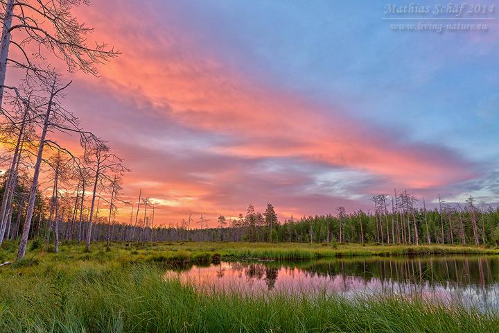 Landschaft Finnland, scenery finland