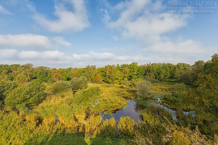 Landschaft Schweden