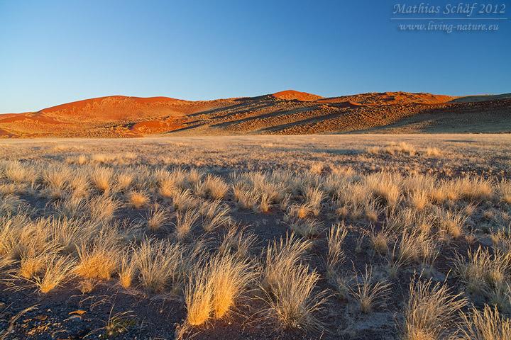 Landschaft, Landscape